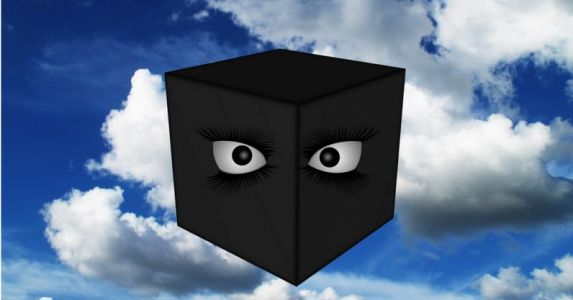 Do you want a black box AI deciding whether you live or die?