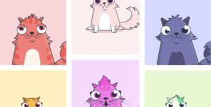 Vancouver-based CryptoKitties secures $12 million in funding