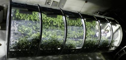 NASA showcases inflatable greenhouse for future Mars astronauts