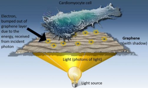 How material from your smartphone could lead to breakthrough cancer treatments
