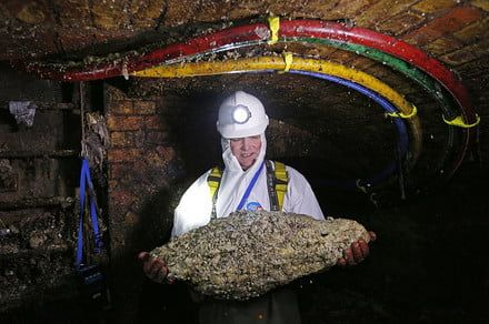 FatCam: Museum of London launches live-stream of a rancid fatberg