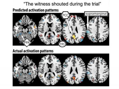 We know what you're thinking: Researchers discover how to identify complex thoughts by measuring brain activity