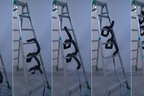 A new snakebot proves that climbing ladders won't save you from killer robots