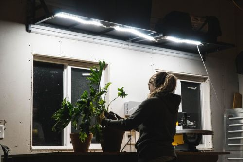 Luminoodle is a Flexible, Thin Light that You Can Use Virtually Anywhere