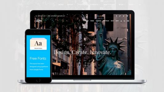 Access unlimited WordPress themes for life