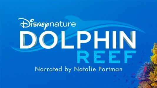Disney+ splashes out on dolphin documentary, with Natalie Portman