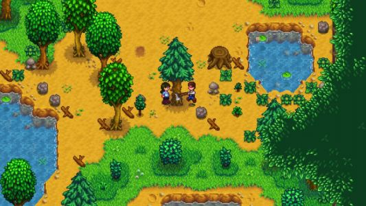 Stardew Valley Multiplayer Coming To Switch In A Few Days