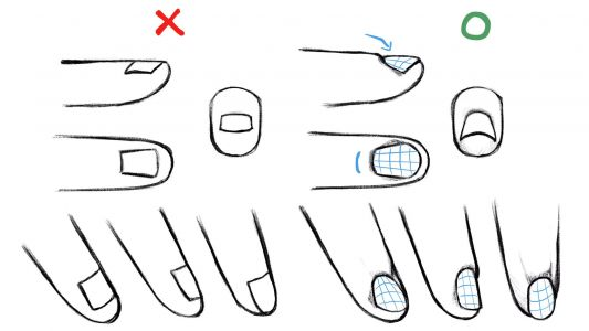 Artists are LOVING these notes on drawing a hand