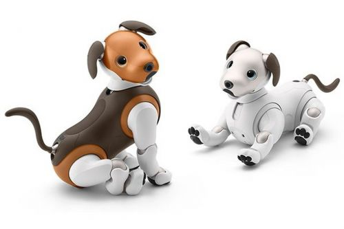 Sony's new Aibo now comes in chocolate
