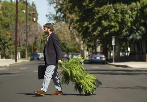 BETWEEN TWO FERNS: THE MOVIE Is Funny, But Unnecessary - Movie Review