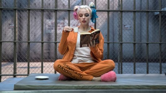 BIRDS OF PREY - Harley Quinn Will Have a New Look, a Diverse Cast, and Barbara Gordon