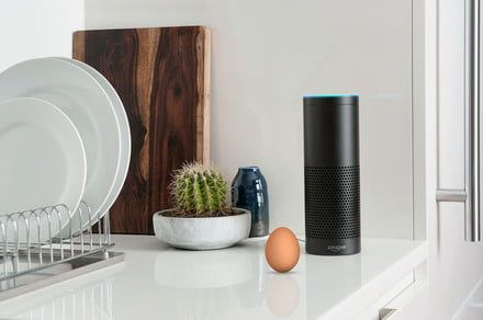 Logistics firm integrates with Alexa and Assistant to help you track deliveries
