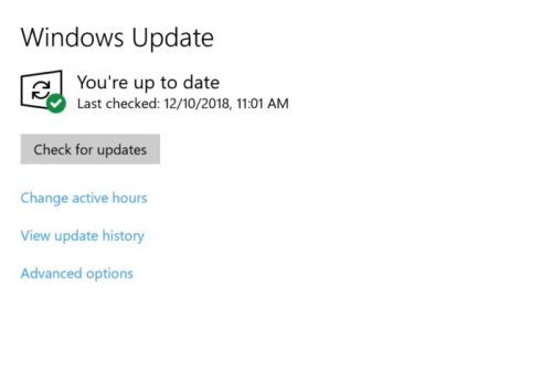 Careful! Windows 10's 'Check for updates' button may download beta code