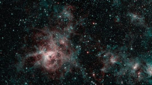 Spitzer Spots Tarantula Nebula and Its Starry Web in Space