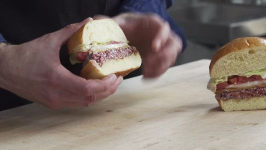 Video Shows How Much Science Went Into Making A Vegetarian Burger Bleed