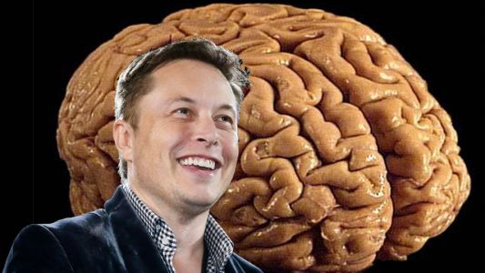 Elon Musk's Neuralink - everything you need to know