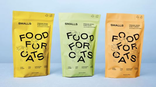 Fun new font captures the playfulness of cats