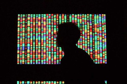 Researchers Developed a New Way to Save Digital Data into a DNA