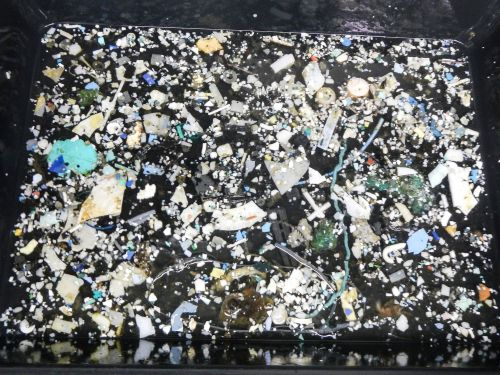 The giant garbage vortex in the Pacific Ocean is over twice the size of Texas - here's what it looks like