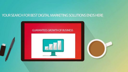 Digital and Online Marketing SEO, SMO Company and Agency India