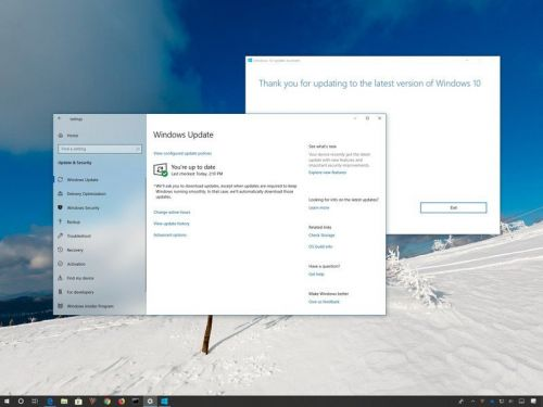 Understanding the Windows 10 May 2019 Update rollout process