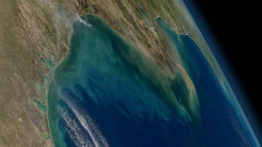Here's How NASA Is Taking a Closer Look at Coastal Water Ecosystems