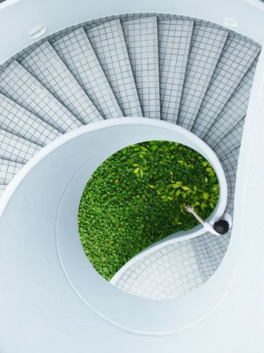 How going green can save your company major dollars