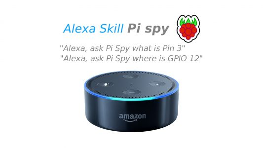 Now there's an Alexa skill to help out Raspberry Pi tinkerers