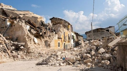 Can Animals Predict Earthquakes? New Research Suggests Not