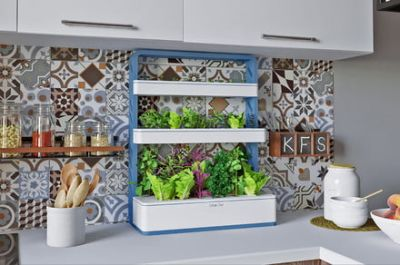 Grow your salad in your closet with the GrowChef hydroponic garden