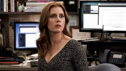 Amy Adams and Laura Dern Bringing Adaptation of Novel THE MOST FUN WE EVER HAD to HBO