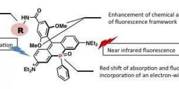 A Near-Infrared Fluorescent Dye For Long Term Bioimaging