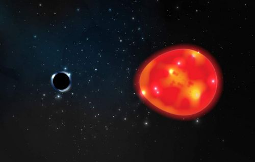 Scientists discover a new small black hole in Earth's neighborhood