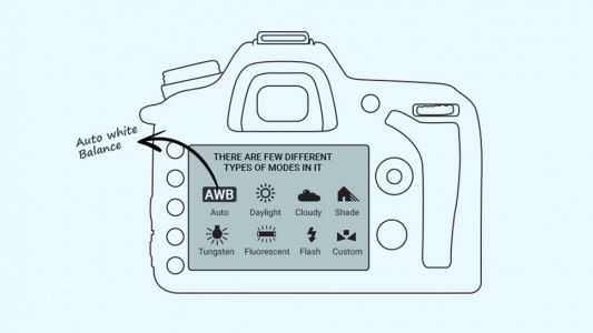Photography cheat sheet helps you take better photos