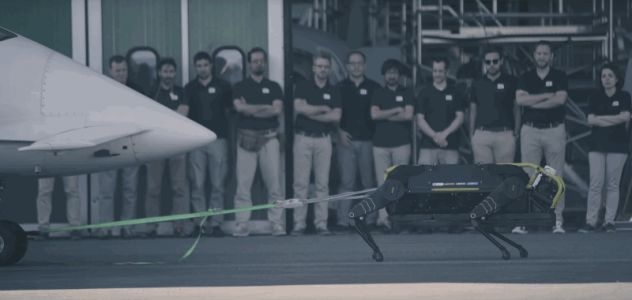 You can do it, robot! Watch the beefy, 4-legged HyQReal pull a plane