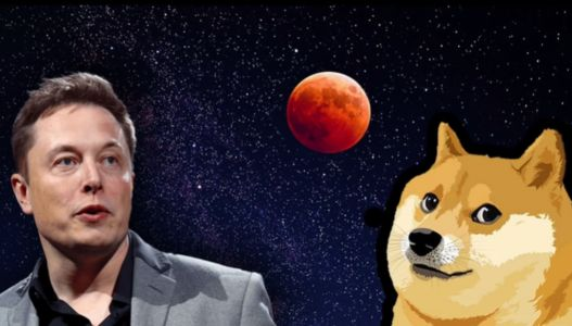 Elon Musk, SpaceX to Launch 'Doge-1' Satellite Mission Paid with Dogecoin-CEO Says 'To the Moon'