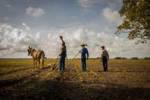 Netflix's 'Mudbound' scores four Oscar nominations