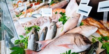 Vaccines Not Protecting Farmed Fish From Disease