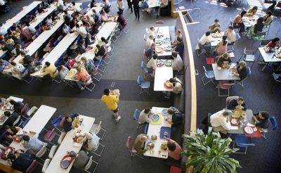 Google's free-food cafeterias: company pushes workers away from meat