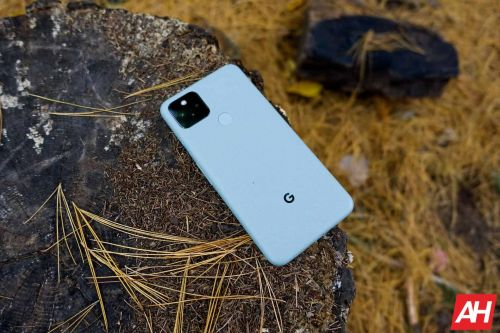 This Latest Pixel Feature Drop Allows You To Take Photos Underwater!