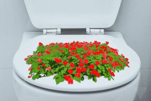 I know I won't get sick, but I'm scared of public toilet seats anyway