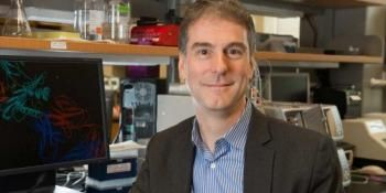 Study Uncovers New Hurdle for Developing Immunotherapies