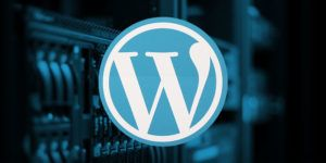 Launch a Custom WordPress Website with No Monthly Fees with This $65 Bundle