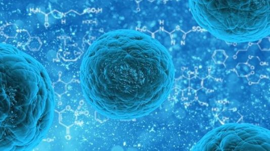 Nanoparticles Grow Bone, Cartilage Tissue Without Harmful Side Effects