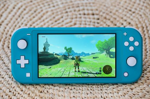 Nintendo's Switch Lite is $30 off today at Rakuten