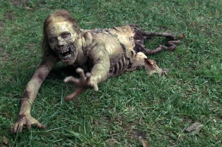 The Walking Dead is getting another spinoff series on AMC