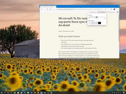 Chromium Edge has a tool to declutter web pages - Here's how to use it