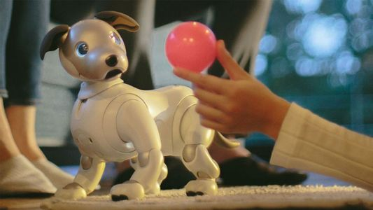 What will tomorrow's children make of robot pets?