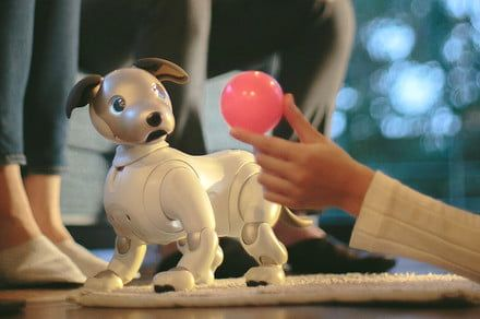 Robot dog: Sony sells thousands of Aibo bots as it considers U.S. launch