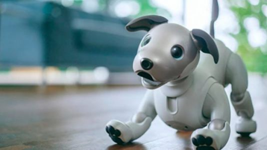 Sony's Next-Gen AIBO Robo-Dog Entertains CES Crowds